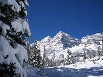 L'adhérence de l'hiver tôt Images libres de droits