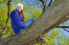 L'adolescente scala un albero fra le foglie verdi Immagine Stock