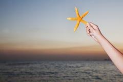 L'adolescente tenant des étoiles de mer, se ferment sur le bras humain Photos libres de droits