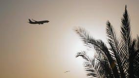 L'aereo entra per l'atterraggio alla luce del contorno archivi video