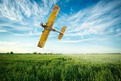 L'aeroplano sorvola un fungicida e un pestici di spruzzatura del giacimento di grano Immagine Stock