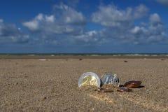 L'affare conia alla festa nella sabbia sulla spiaggia, Mare del Nord Fotografia Stock Libera da Diritti