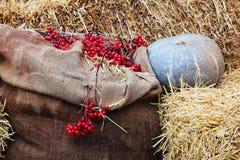 L'affichage de thanksgiving du potiron sur des piles de foin et la toile de jute renvoient des WI Photographie stock libre de droits