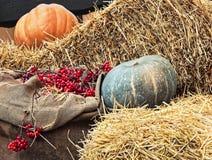 L'affichage de thanksgiving du potiron sur des piles de foin et la toile de jute renvoient des WI Photo libre de droits
