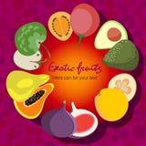 L'affiche de fruit du vecteur porte des fruits tropical Photo stock