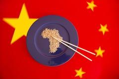 L'Africa mangia Fotografia Stock
