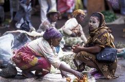 L'AFRIQUE COMORES ANJOUAN Image libre de droits