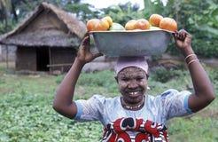 L'AFRIQUE COMORES ANJOUAN Photographie stock libre de droits