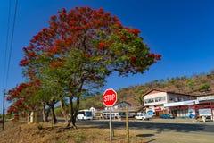 L'Afrique du Sud, Souaziland photos stock