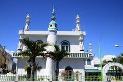 L'Afrique, grand mosq de baie en Mauritius Island Images libres de droits