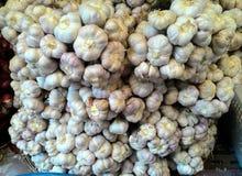 L'aglio Fotografie Stock Libere da Diritti