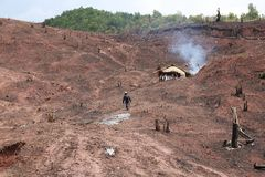 L'agricoltore è foresta pluviale tropicale distrutta in Tailandia, per il Mo Immagine Stock Libera da Diritti