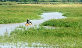 L'agricoltore asiatico, la barca di fila, famiglia, va lavorare Immagine Stock