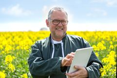 L'agricoltore attraente senior che lavora in un campo ha aiutato dalla sua compressa Fotografia Stock Libera da Diritti