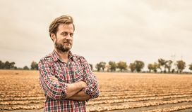 L'agricoltore in camicia di plaid e la cipolla sistemano - l'agricoltura Fotografia Stock