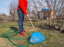 L'agricoltore che lavora nel giardino, rastrello della giovane donna rimuove il prato inglese, strumenti di giardino Immagini Stock