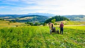 L'agricoltore coltiva il suolo con un cavallo in un'area montagnosa Immagini Stock Libere da Diritti