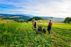 L'agricoltore coltiva il suolo con un cavallo in un'area montagnosa Fotografie Stock Libere da Diritti