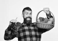 L'agricoltore con il fronte felice presenta le mele, i mirtilli rossi e l'uva matura Il tipo con l'uomo del raccolto con la barba Fotografie Stock Libere da Diritti