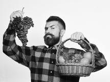 L'agricoltore con il fronte fiero presenta le mele, i mirtilli rossi e l'uva matura Fotografie Stock Libere da Diritti