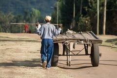L'agricoltore con il suo carretto misero ha tirato da un asino, Etiopia, Africa Immagini Stock