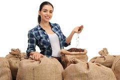 L'agricoltore con un mucchio dei sacchi della tela da imballaggio ha riempito di caffè Immagini Stock