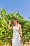 L'agricoltore della giovane donna assaggia un vetro di vino rosso Immagini Stock