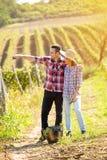 L'agricoltore delle coppie guarda per possedere la vigna Fotografia Stock
