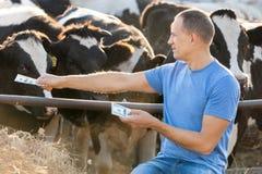 L'agricoltore di concetto alimenta ad animali i soldi Fotografia Stock
