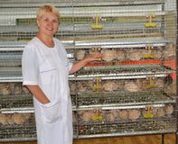 L'agricoltore femminile allegro mostra su una gabbia con le quaglie Immagine Stock