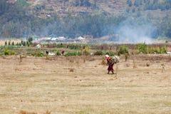 L'agricoltore femminile anziano porta la legna da ardere Immagine Stock Libera da Diritti