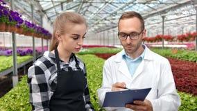 L'agricoltore femminile professionista che discute il lavoro con l'ingegnere agricolo ha circondato dalla pianta fresca stock footage