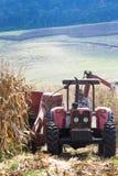 L'agricoltore guida il trattore Fotografie Stock