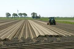 L'agricoltore olandese fa le creste della patata in terre coltivabili Fotografie Stock Libere da Diritti