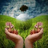 L'agricoltore porta i semi con la volata globale dell'albero, sostenibile Fotografie Stock