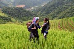 L'agricoltore porta il canestro sulla spalla Fotografia Stock Libera da Diritti