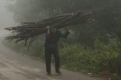 L'agricoltore porta la legna da ardere dalla foresta Fotografia Stock Libera da Diritti