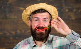 L'agricoltore rustico in cappello di paglia gradisce il gusto piccante Concetto del raccolto del pepe del raccolto del pepe della fotografia stock libera da diritti