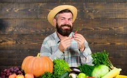 L'agricoltore rustico in cappello di paglia gradisce il gusto piccante La tenuta barbuta dell'agricoltore del raccolto del pepe d fotografia stock libera da diritti