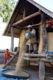 L'agricoltore spula il riso alla casa sui trampoli Fotografia Stock
