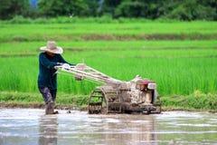 L'agricoltore sta arando con il trattore per preparare piantare riso nella stagione delle pioggie Immagine Stock