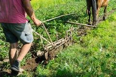 L'agricoltore sta arando una terra Immagine Stock