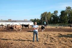 L'agricoltore sta lavorando all'azienda agricola con le mucche da latte Immagini Stock