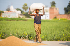 L'agricoltore sta portando la borsa loro capi Immagini Stock