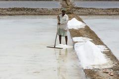L'agricoltore sta raccogliendo l'azienda agricola del sale, arera di Pondicherry Fotografie Stock