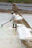 L'agricoltore sta raccogliendo l'azienda agricola del sale, arera di Pondicherry Immagini Stock