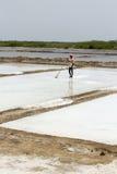 L'agricoltore sta raccogliendo l'azienda agricola del sale, arera di Pondicherry Fotografia Stock