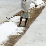 L'agricoltore sta raccogliendo l'azienda agricola del sale, arera di Pondicherry Immagine Stock