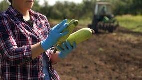 L'agricoltore sta tenendo uno zucchini sui precedenti di un trattore funzionante nel campo archivi video