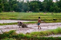L'agricoltore tailandese fa la preparazione del suolo per riso Immagine Stock